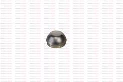 898006055051 - KAPAK, ARKA POYRA SOMUN(4X2-RBA)